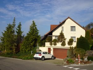6.5 EFH – 5306 Tegerfelden