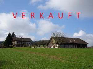 7.5 EFH – 5420 Ehrendingen